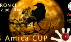 W czerwcu 15 Amica Cup